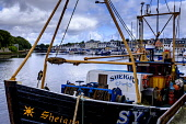 Fishing boats in the harbour in Stornoway, Isle of Lewis, Outer Hebrides, Scotland Andrew Wilson  /Scottish Viewpoint Isle of Lewis,Outer Hebrides,Scotland,Stornoway,boats,fishing,fishing fleet,fishing trawler,harbor,harbour,in harbour,tied up,tied-up,scottish