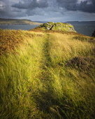The ruins of the iron age fort of Dun Ringill by Loch Slapin, Strathaird, Isle of Skye Alan Gordon  /Scottish Viewpoint Highlands,Islands,Loch Slapin,Scotland,Skye,Strathaird,abandoned,atmospheric,autumn,bracken,broch,clouds,cloudy,coast,dun,field,footpath,fort,grass,hill fort,hills,historic,history,iron age,landscape,