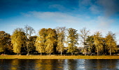 Trees in autumn colour on the banks of the River Ness in Inverness, Scotland Andrew Wilson  /Scottish Viewpoint Inverness,River,Bank,River Ness,Tourist Destination,autumn colour,cold,fall color,highlands of Scotland,quiet street,riverside,sunny day,sunshine,tree,people