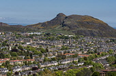 View of city from Blackford Hill, Edinburgh Allan Wright  /Scottish Viewpoint united kingdom,edinburgh,scotland,lothians,capital city of scotland,auld reekie,sunny,summer,bright,calton hill,arthur's seat,view from blackford hill,city,house,houses,town houses,terraced,distant,ci