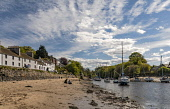 Allan Wright  /Scottish Viewpoint united kingdom,edinburgh,scotland,lothians,capital city of scotland,auld reekie,cramond,tourists,house,houses,terraced,marina,port,harbour,sloop,yacht,sailing boat,estuary,river,burn,stream,sandy,sea,