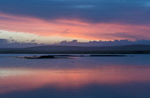 Loch of Harray Orkney Allan Wright /Scottish Viewpoint orkney,scotland,scottish,sunset. harray loch,swan,coast,coastal,coastline,water,sea,island,islands,isle,isles