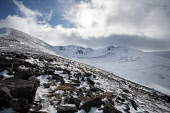 Cairngorm Mountain    Looking up the mountain Gillian Frampton/HIE 2020,Mountain,cairngorm,ski,HIE2,activity,activities,skiing,skier,skiers,sport,snow,snowsport,snowsports,winter,cairngorms,mountains,hill,hills,national,park,landscape
