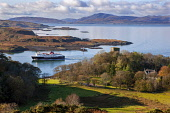 Autumn view of Dunollie castle, Oban, Argyll Tony Hardley /Scottish Viewpoint scotland,dunollie castle,macdougall,clan,clan macdougall,landscape,castle,oban,mull,ferry,mull ferry,calmac,caledonian macbrayne,autumn,fall,argyll argyll oban,argyll castle,castle scotland