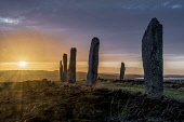 Ring of Brodgar sunrise , Orkney Allan Wright  /Scottish Viewpoint exploring,atmospheric,dramatic,dawn,dry,enchanting,peaceful,pretty,sunrise,amber,colourful,copper,warm,golden,orange,bog cotton,moorland,ancient,ambient light,neolithic,historic,pagan,standing stone,s