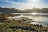Loch na Keal, Mull Allan Wright  /Scottish Viewpoint isle of mull,inner,hebrides,enchanting,dawn,hebridean,moody,lyrical,peaceful,pretty,sunrise,tranquil,sweet,warm,blue,bay,beach,boulders,island,loch,mountains,sea,shore,escapism,scotland,united kingdom