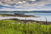 Gigha shore by ferry port, Inner Hebrides Allan Wright  /Scottish Viewpoint hebridean,bright,blue sky,peaceful,restful,summer,sunny,tranquil,aqumarine,colourful,scotland,argyll & bute,inner hebrides,foxgloves,flag iris,caledonian,macbrayne,cal,mac,calmac,ferry,ferries,transpo