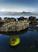 Shore detail on the Island of Eigg, Inner Hebrides Allan Wright  /Scottish Viewpoint uk,u.k,Great Britain,GB,G.B,Scotland,Scottish,nobody,daytime,outdoors,coast,coastal,coastline,water,sea,rocks,detail,island,islands,isle,isles,rock