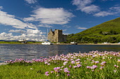 Lochranza Castle, Arran Allan Wright /Scottish Viewpoint Lochranza,arran coastal,coastline,water,sea,island,islands,isle,isles