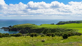 PANORAMA, Looking along cliffs to Dunnottar Castle, Stonehaven, Aberdeenshire,  Scotland UK Dennis Barnes /Scottish Viewpoint Stonehaven,dramatic,cliff,coastal,path,walk,sea,to,Dunnottar,Castle,Coast,Aberdeenshire,Scottish,UK,United Kingdom,nobody,coastline,water