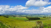 PANORAMA, Howe of the Mearnes and Angus Glens from Hill of Garvock, Near Laurencekirk,  Aberdeenshire,  Scotland UK Dennis Barnes /Scottish Viewpoint Howe,of,the,Mearns,and,Angus,Glens,from,Hill. of,Garvock,Near,Laurencekirk,historic,sunny,Aberdeenshire,Scottish,UK,United Kingdom,glen