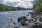 Looking  west up river Dee to Victoria Bridge at Ballater, Aberdeenshire,Scotland UK Dennis Barnes /Scottish Viewpoint river,Dee,near,Victoria,Bridge,Ballater,spring,Aberdeenshire,landscape,Scottish,UK,United Kingdom,royal,deeside,nobody