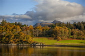 Ben Cruachan and Achnacloich, Loch Etive, Argyll Tony Hardley /Scottish Viewpoint scotland,loch etive,cruachan,ben cruachan,argyll,autumn,fall,landscape,autumn colours,scottish landscape,nobody,outdoors,water