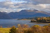 Autumn view across Loch Etive towards Ben Cruachan, Argyll Tony Hardley /Scottish Viewpoint scotland,loch etive,ben cruachan,hills,mountains,fall,autumn,argyll,mountain,hill,nobody,outdoors,snow