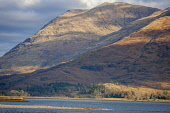 Beinn Sgulaird, Loch Creran, Highlands Tony Hardley /Scottish Viewpoint scotland,loch creran,autumn,fall,ben sculaird,beinn sculaird,autumn scotland,mountains,hills,scottish highlands,munro,water,nobody,daytime