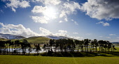 Flooded fields in the Scottish Borders near the village of Broughton Andrew Wilson /Scottish Viewpoint Flooded,fields,flood,under water,farming land,farm land,winter,agriculture,snow,mountain,mountains,hill,hills,water,tree,trees,wood,woodland,woods,forests,forest