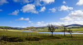 Flooded fields in the Scottish Borders near the village of Broughton Andrew Wilson /Scottish Viewpoint Flooded,fields,flood,under water,farming land,farm land,winter,agriculture,mountain,mountains,hill,hills,snow,water