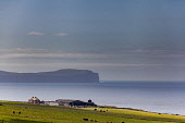 View of a farm near Dunnet Head, Highlands Bill McKenzie/Scottish Viewpoint coast,coastal,coastline,water,sea,mountain,mountains,hill,hills,distance,nobody,agriculture,livestock,animal,animals,graze,grazing,farm,farms,farming,countryside