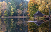 Autumn colours on woodland foliage and wooden boathouse at Loch Dunmore in Faskally Wood near Pitlochry in Perthshire, Scotland,UK Iain Masterton /Scottish Viewpoint scotland,scottish,autumn,loch dunmore in autumn,loch dunmore perthshire,loch dunmore scotland,Perthshire,perth and kinross,uk,United Kingdom,Britain,british,autumnal,colours,landscape,woodland,fall co
