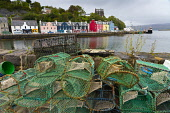 View of lobster pots and colourful buildings along waterfront at Tobermory harbour on Mull, Argyll & Bute, Scotland, UK Iain Masterton /Scottish Viewpoint Scotland,Tobermory,Tobermory Mull,Mull,Scottish village,Isle of Mull,Island of Mull,Mull Scotland,Argyll & Bute,uk,united kingdom,britain,british,harbour,exterior,travel,tourism,harbours,colourful bui